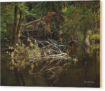 In The Wild Wood Wood Print by RC deWinter