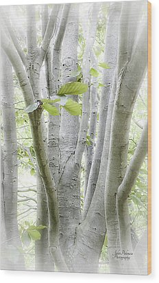 In The Woods Wood Print by Julie Palencia