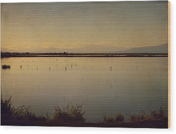 In These Peaceful Moments Wood Print by Laurie Search