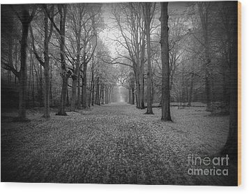 In Your Darkest Hour Wood Print by Jacky Gerritsen