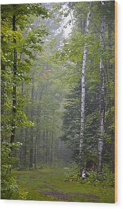 Wood Print featuring the photograph Incoming Fog by Susan Crossman Buscho