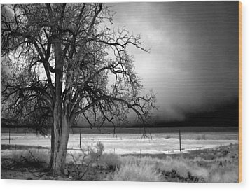 Incoming Storm Wood Print by Cat Connor