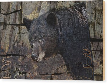 Inconspicuous Bear Wood Print by Ed Hall