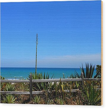 Indialantic By The Sea Wood Print by Kay Gilley