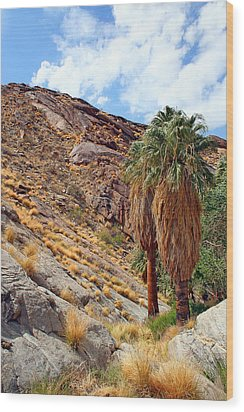 Indian Canyons View With Two Palms Wood Print by Ben and Raisa Gertsberg