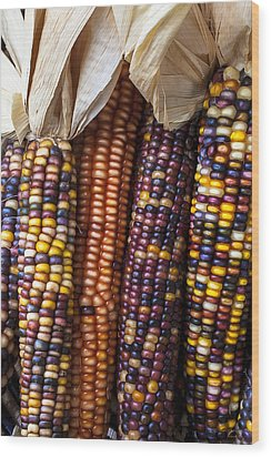 Indian Corn Close Up Wood Print by Garry Gay