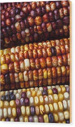Indian Corn Harvest Time Wood Print