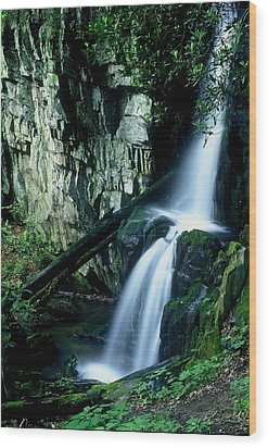 Indian Falls Wood Print by Rodney Lee Williams