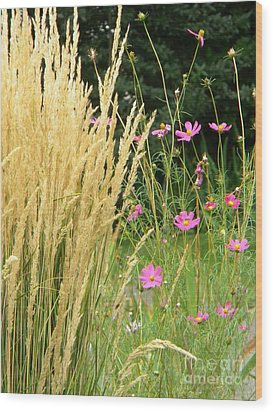 Indian Grass And Wild Flowers Wood Print