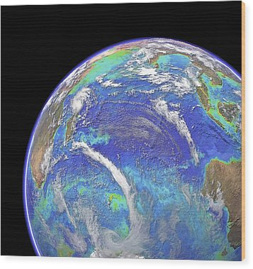 Indian Ocean, Chlorophyll And Bathymetry Wood Print by Science Photo Library