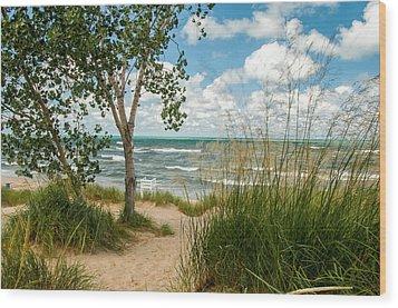 Indiana Sand Dunes State Park Wood Print