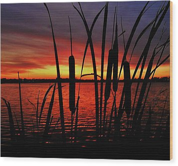 Indiana Sunset Wood Print by Benjamin Yeager
