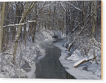 Indiana Winter Wood Print by Thomas Fouch