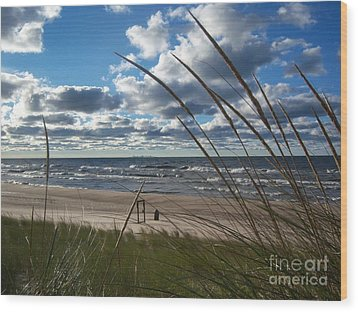 Indiana Dunes' Lake Michigan Wood Print by Pamela Clements