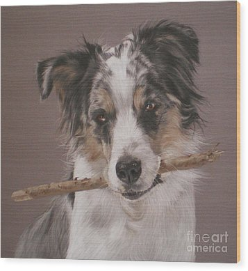 Indy - Border Collie Wood Print by Joanne Simpson