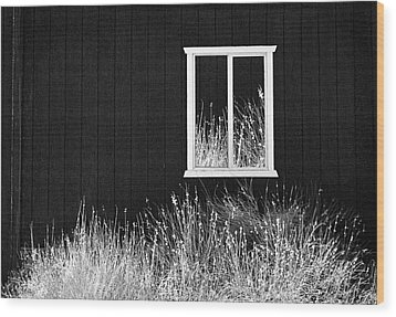 Wood Print featuring the photograph Infrared Barn by Sharon Beth