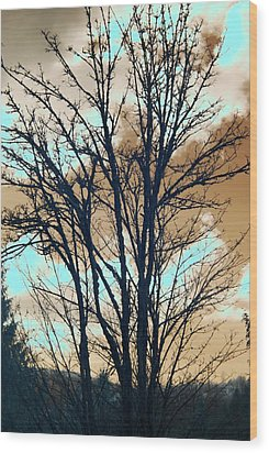 Wood Print featuring the photograph Infrared Split Second Sun Couds by Rebecca Parker