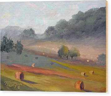 Ingram Haybales Wood Print by Tommy Thompson