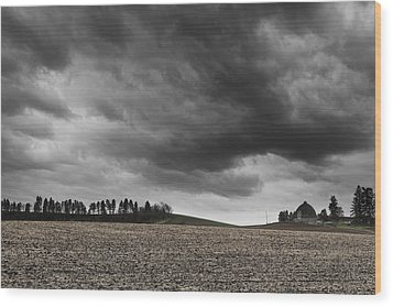 Inland Wood Print by Ryan Manuel