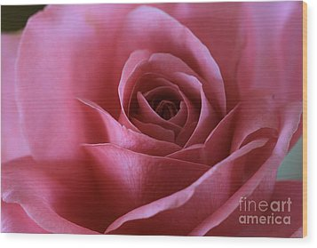 Inner Beauty All Profits Go To Hospice Of The Calumet Area Munster Indiana Wood Print