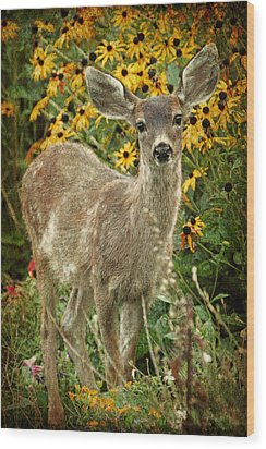 Wood Print featuring the photograph Innocent Fawn And Flowers by Peggy Collins