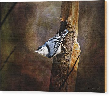 Wood Print featuring the digital art Inquisitive Nuthatch by J Larry Walker