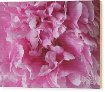 Wood Print featuring the photograph Inside A Pink Peony by Margaret Newcomb