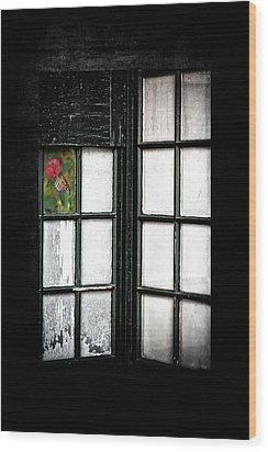 Inside Looking Out Wood Print by Bobbi Feasel