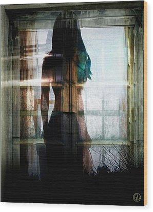 Inside Or Outside Wood Print by Gun Legler