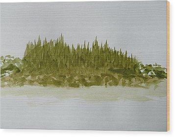 Inside Passage Islet Wood Print by Joel Deutsch