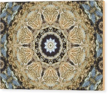 Inside The Dream Wood Print by Tom Druin