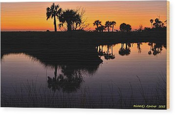 Wood Print featuring the photograph Intense Reflections by Richard Zentner