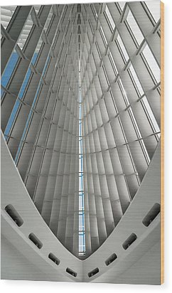 Interior Milwaukee Art Museum Wood Print by Paul Plaine