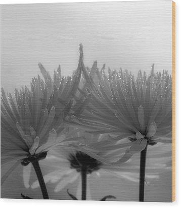 Intimacy Wood Print by Tom Druin