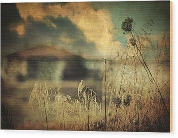 Into Deep Sleep Wood Print by Taylan Apukovska