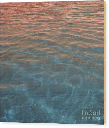 Into The Blue At Sunset Wood Print by Cindy Lee Longhini