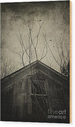 Into The Dark Past Wood Print by Trish Mistric