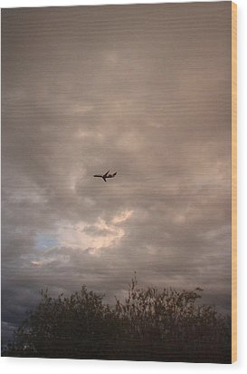 Into The Evening Sky Wood Print by Yvette Pichette