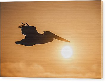 Wood Print featuring the photograph Into The Light by Brian Bonham