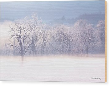 Into The Mist Wood Print by Laurinda Bowling