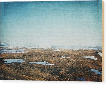 Wood Print featuring the photograph Into The Sea by Lisa Parrish