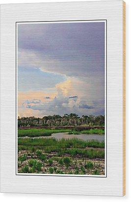 Intracoastal Colours Wood Print by Alice Gipson