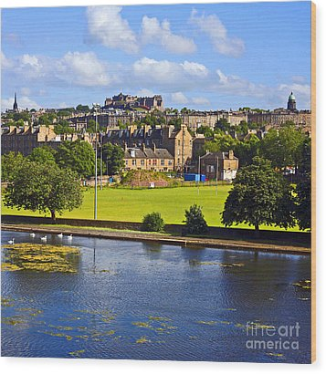 Inverleith Park Edinburgh Wood Print by Craig B