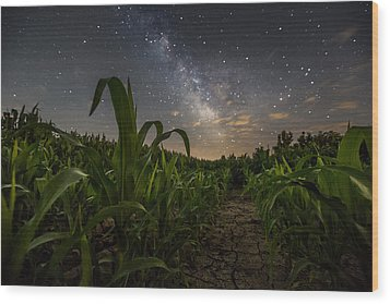 Iowa Corn Wood Print
