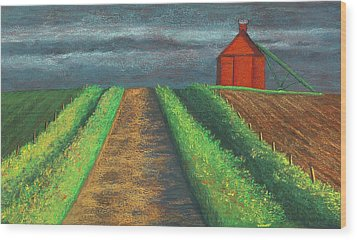 Iowa Country Road Wood Print by Garry McMichael
