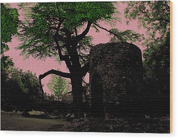 Ireland Hidden Wood Print by Will Burlingham