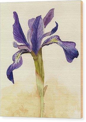 Iris Wood Print by Barbie Corbett-Newmin