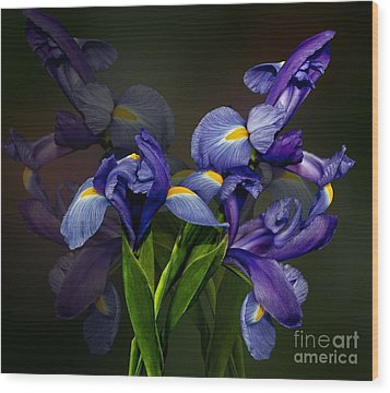Wood Print featuring the photograph Iris Fantasy by Shirley Mangini