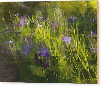 Wood Print featuring the photograph Iris Garden  by Linde Townsend