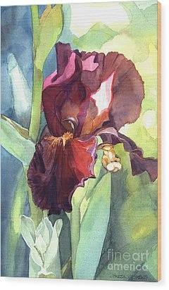 Watercolor Of A Tall Bearded Iris Called Sultan's Palace In Red And Burgundy Wood Print